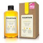 Molecula Fericirii - Fountain