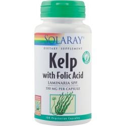 Kelp 550mg - Solaray