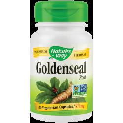 Goldenseal 570mg - Nature's Way